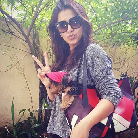 Nikki Galrani Carrying her Puppy