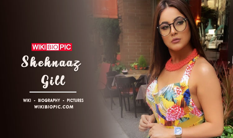 Shehnaaz Gill Bigg Boss Contestant Age Height Body Size Measurements Husband Boyfriend Family Details Biodata Videos and Photos